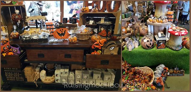 Farmer Copleys Pumpkin Festival - Farm Shop