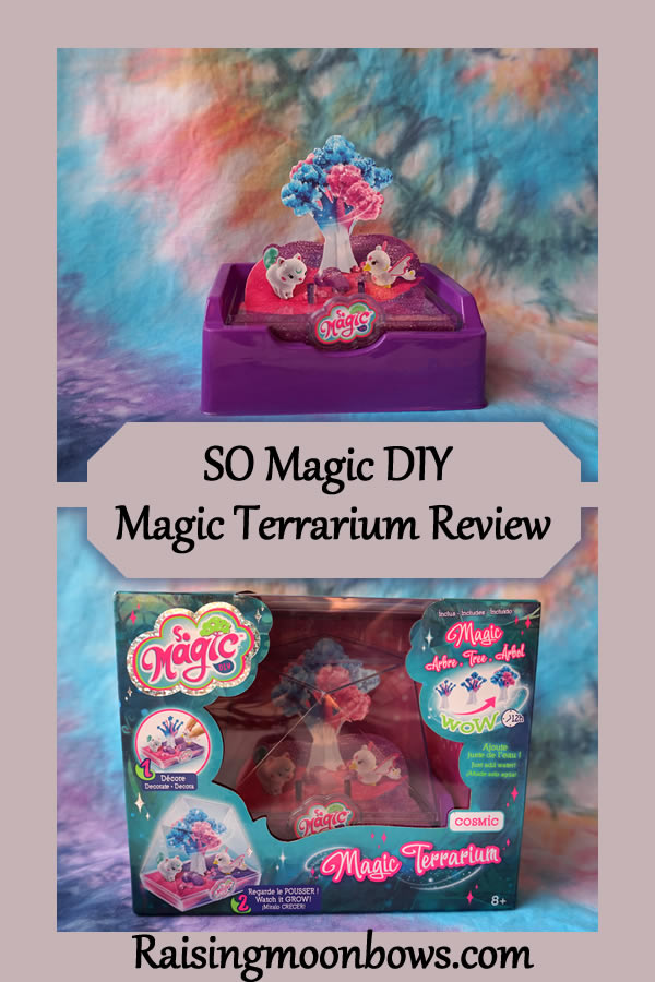 SO Magic DIY  Magic Terrarium Review - pin it